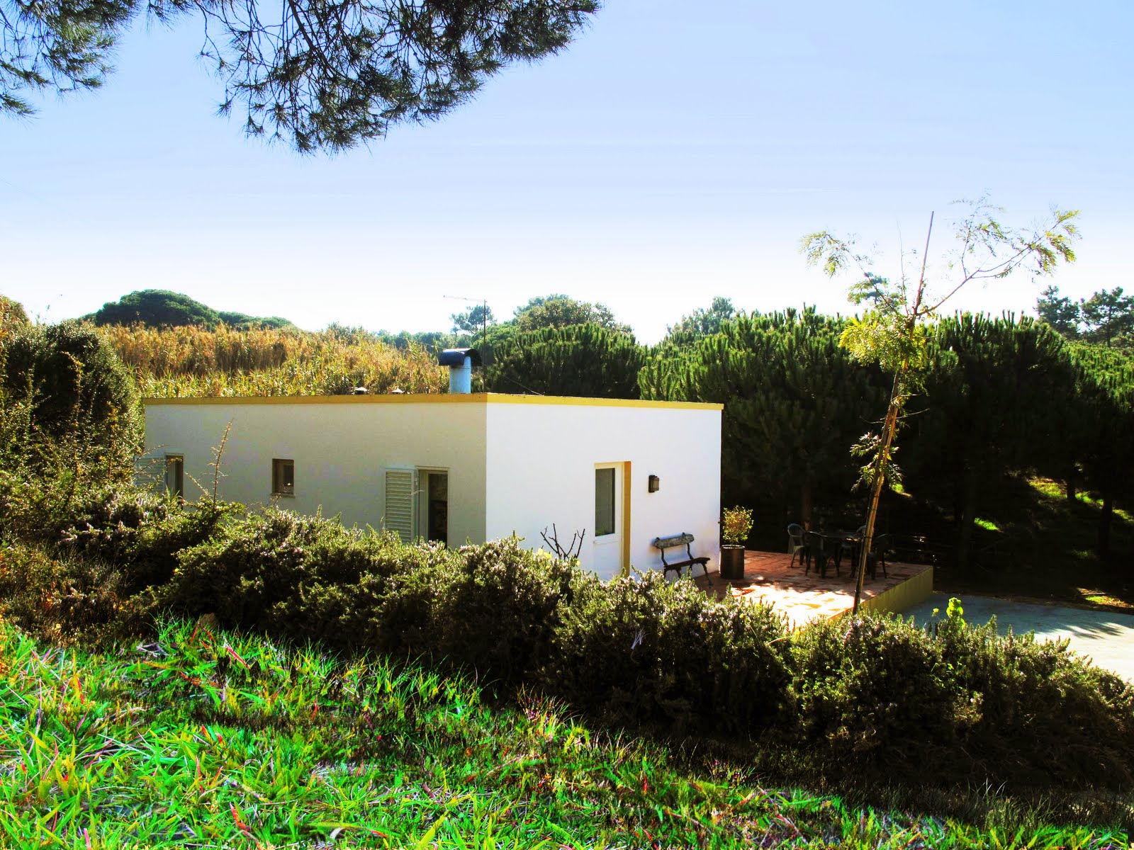 Casa do Pinhal – Secluded 2-3 bedroom house by the seaside