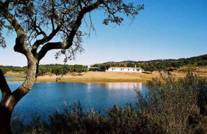 Monte das Fontes – Luxury Quinta on large estate with private swimming lake