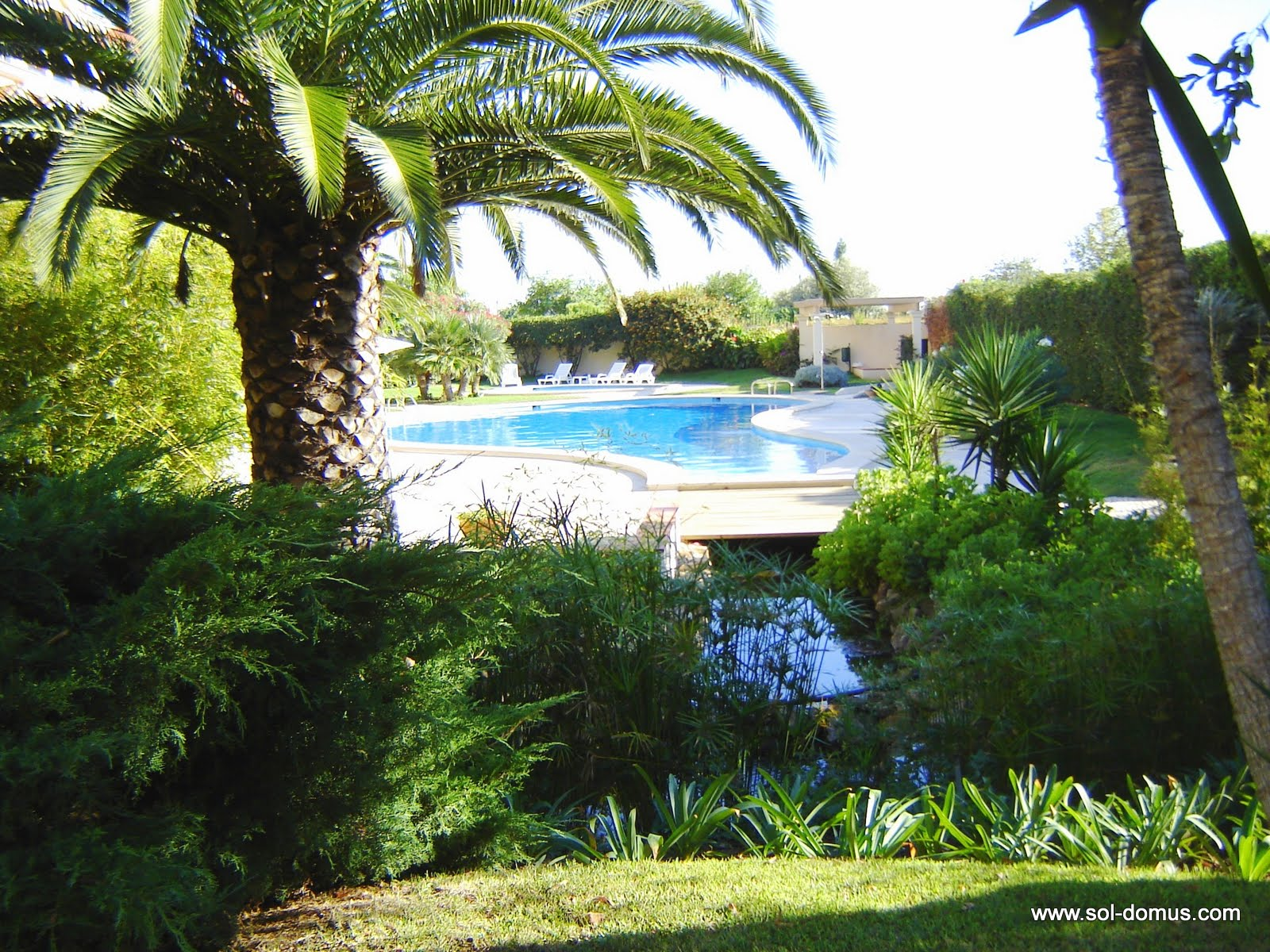 The swimming pool from the gardens